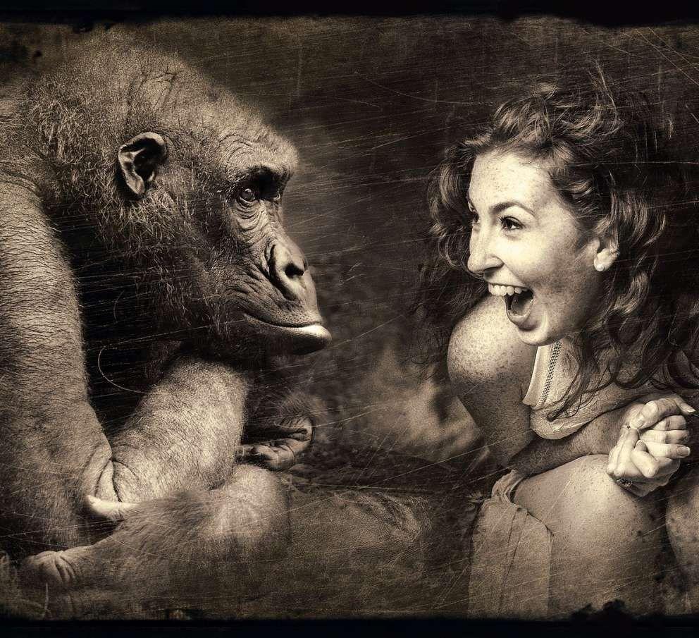 [:cs]intuice opice a zena[:]